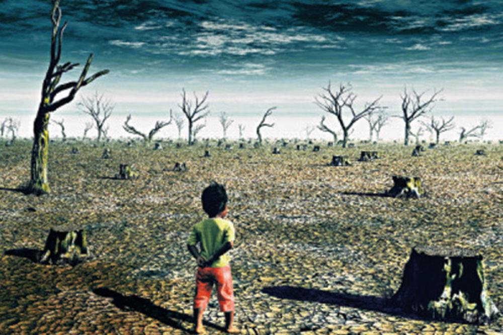 309871 Biljke Zivotinje Klimatske Promene Globalno Zagrevanje Ls