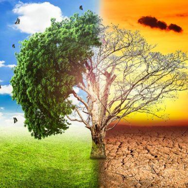 Naučnici Iznenađeni Brzinom Klimatskih Promjena