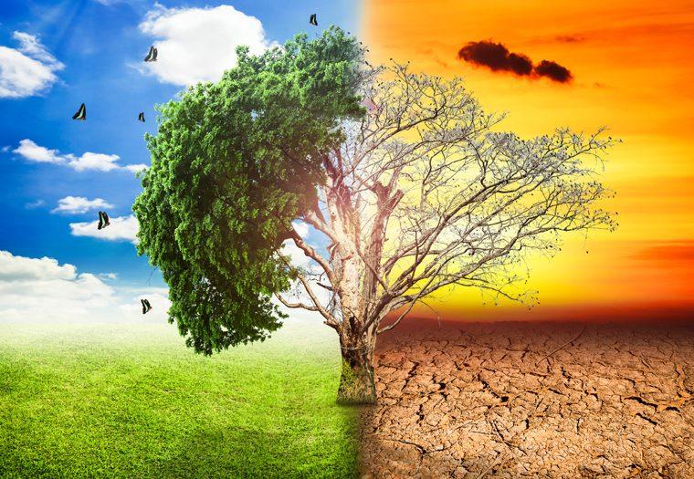 Klimatske Promjene I Utjecaj Na Zdravlje 760×525