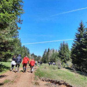 EKO Hub Blagaj/Novi Val Organizuje Još Jednu Akciju čišćenja Na Području Nevesinja