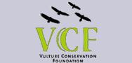 vulture_foundaiton